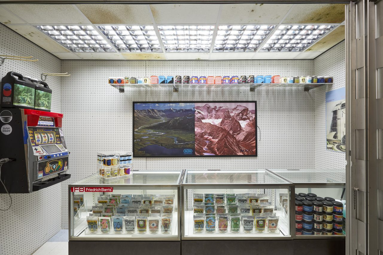 An installation view of Colony Sound by Freeman and Lowe
